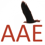 AAE Summer and Winter Schools