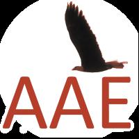 AAE Summer and Winter Schools